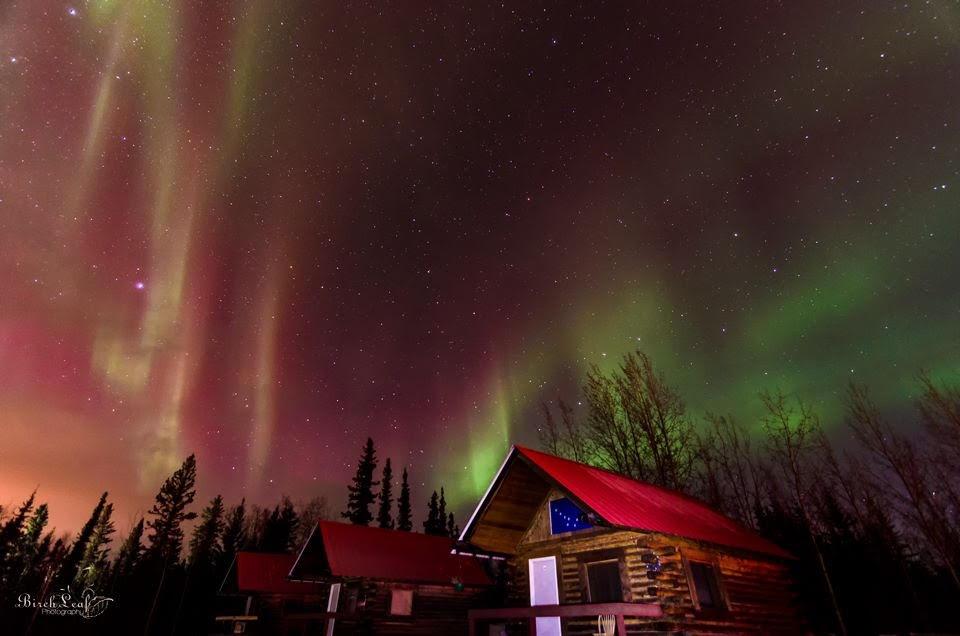 Norther Lights - Cabin - Silverfox Roadhouse Alaska