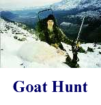 goat-hunt